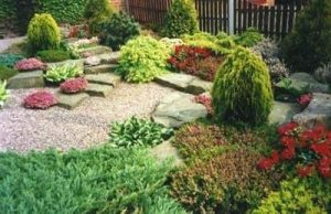 Low Maintenance Ultimate Garden image 19