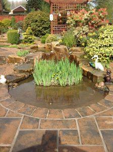 Water Features Ultimate Garden image 3