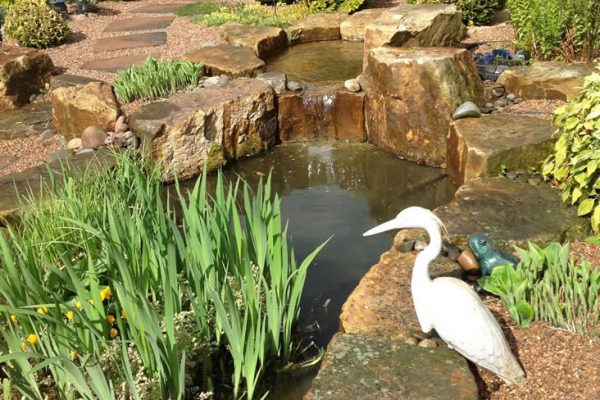 Water Features Ultimate Garden image 13