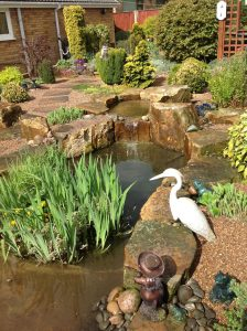 Water Features Ultimate Garden image 4