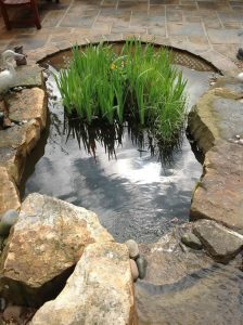 Water Features Ultimate Garden image 14