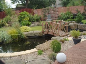 Water Features Ultimate Garden image 20