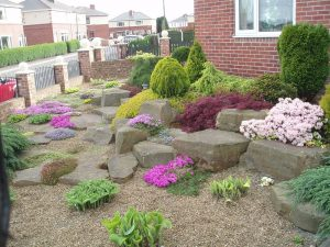 Low Maintenance Ultimate Garden image 11
