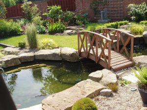 Water Features Ultimate Garden image 22