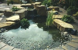 Water Features Ultimate Garden image 25